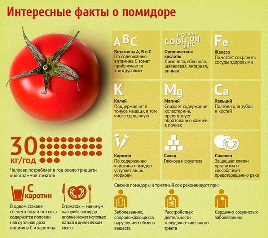 Польза помидоров - интересные факты