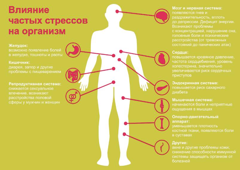 Влияние частых стрессов на организм
