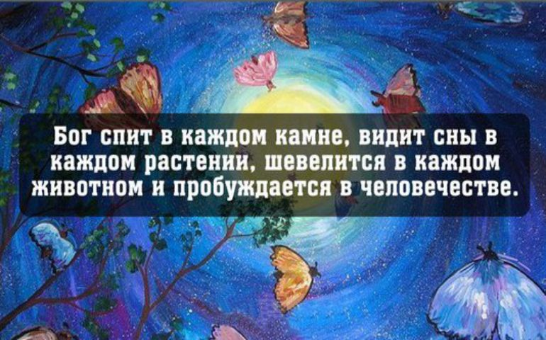 Картинка цитата номер 243