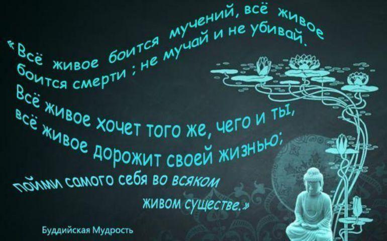 Картинка цитата номер 734