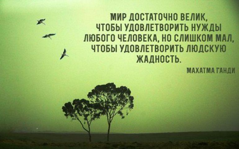 Фото цитата номер 254