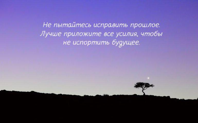 Фото цитата номер 184