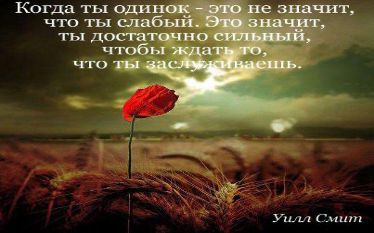 Картинка цитата номер 655